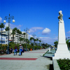 Larnaca Town Palm Tree Sea Front, click to enlarge this photgraph